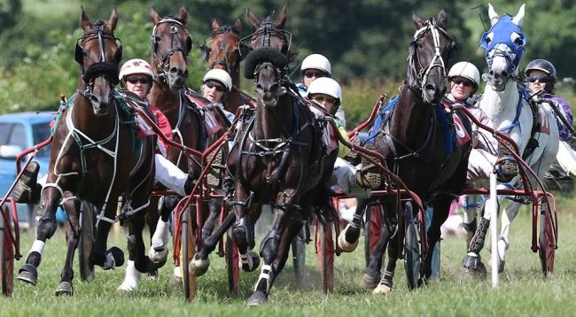 Harness Racing returns to Bitterley this weekend