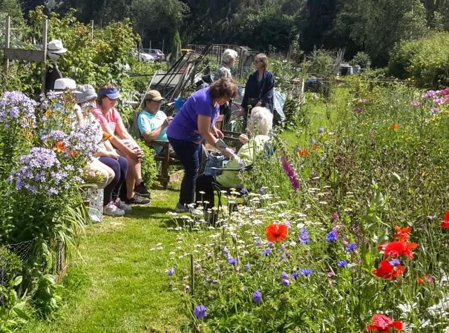 The Garden Party, held in Wigley's Field Organic Allotments at Dinham
