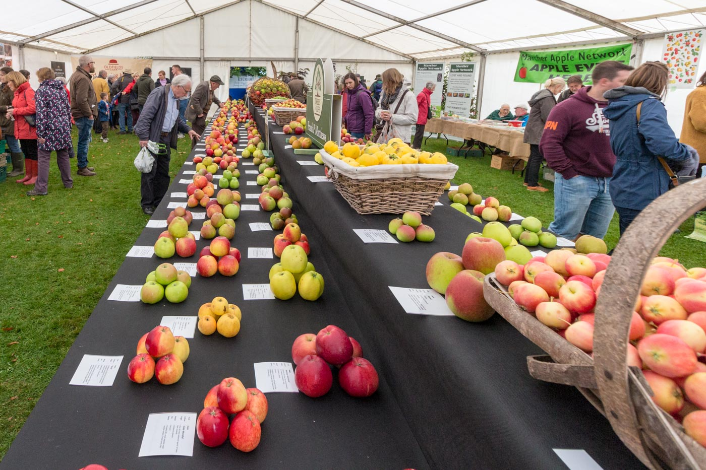 Tenbury Applefest 2019