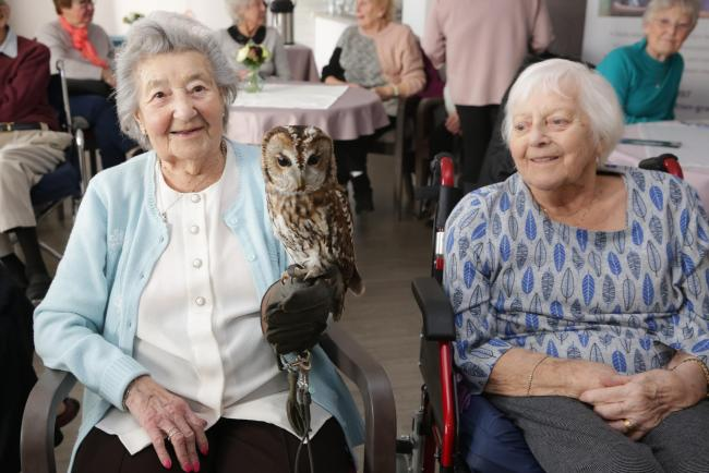 Residents at Brook Court care home in Kidderminster are joining in with the RSPB Big Garden Birdwatch