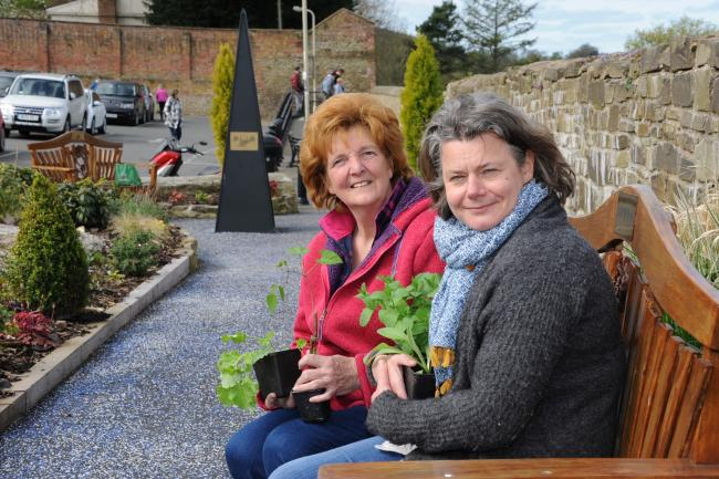 Vegetables in Bloom is set to be part of this year's Ludlow in Bloom campaign...Viv Parry (Chairman, Ludlow in Bloom) with Tish Marsh (Chairman, Incredible Edible) with some vegetable plants in Castle Car Park sensory garden.1715_5002.