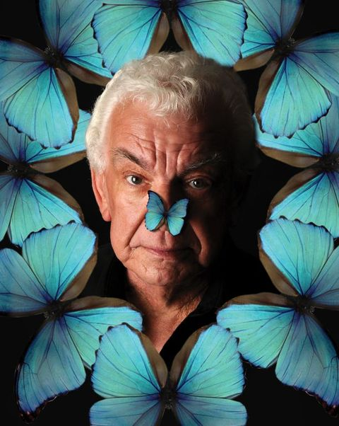 Barry Cryer's Butterfly Brain