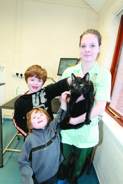 Do you know where he lives? Adam and Oliver McMeekin along with Teme Veterinary Practice student Abi Page.The boys' mum Ann Hollier found the cat in Little Hereford.