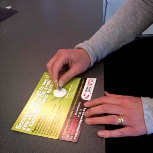 Police are handing out 'scratch and sniff' cannabis card to help people detect drug farms