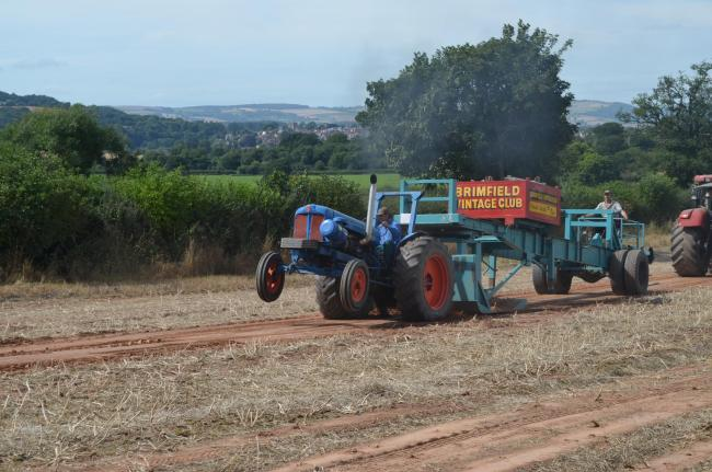 A member of the Vintage Club Tractor pulling. Picture by Alison Wozencroft Photography.