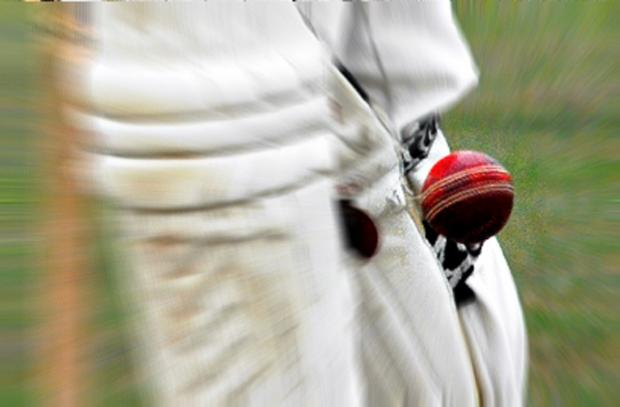 Ludlow Advertiser: South Shropshire Twenty 20 League players can win representative honours