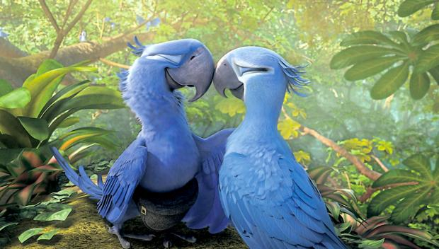 Empathy For Special Children is holding a screening of Rio 2.