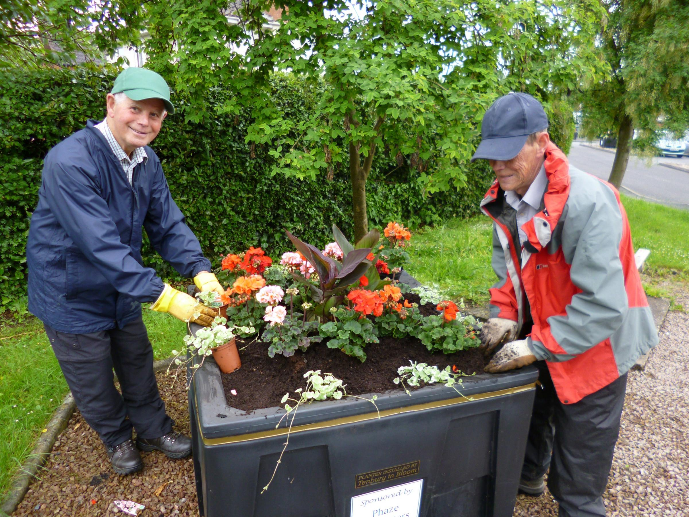 Planting takes place for Tenbury In Bloom