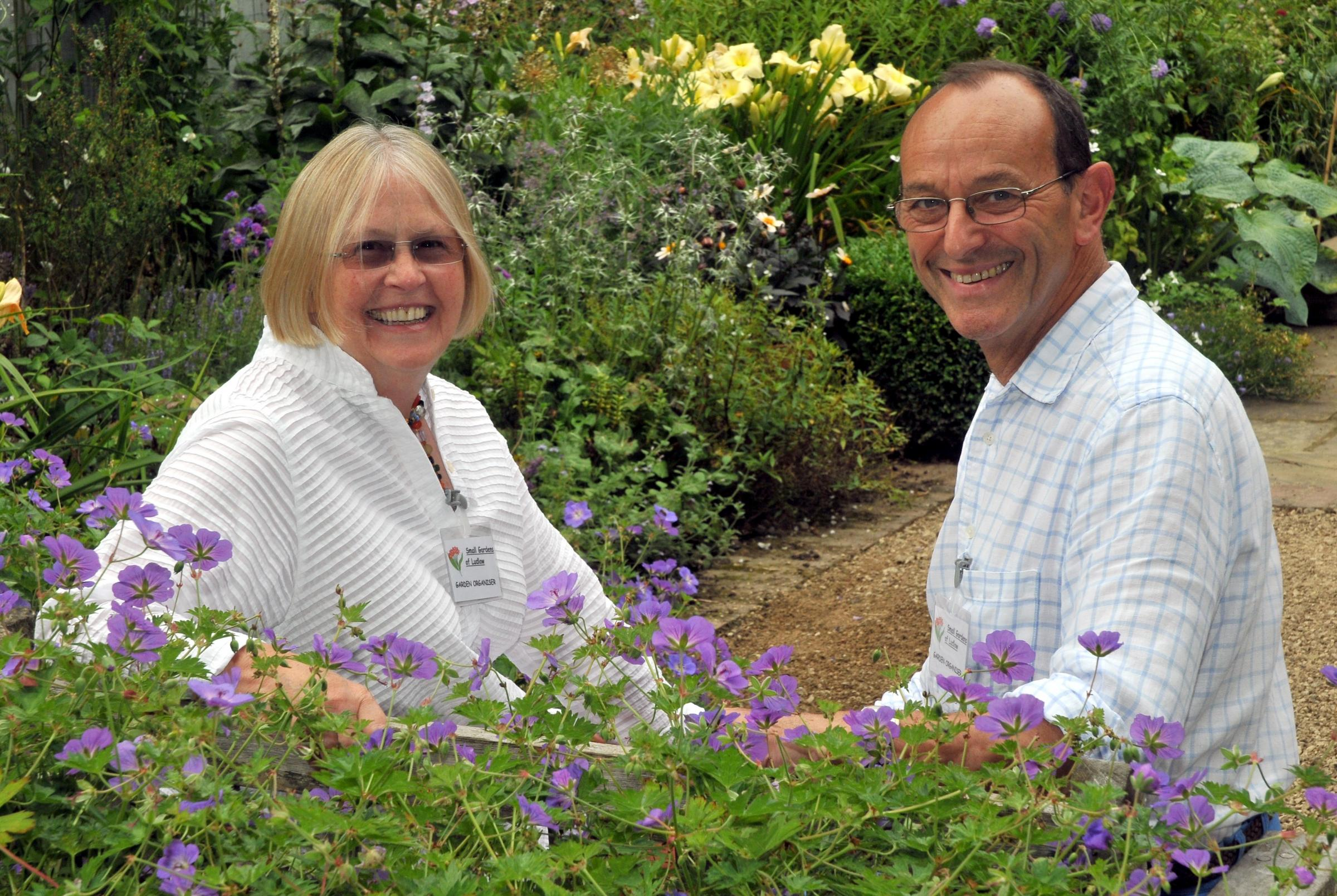 Ludlow Festival of Small Gardens brings colour to a summer weekend