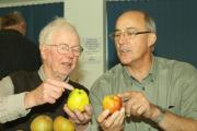 John Lloyd and Jamie Wrench inspect some of the apples on view. Photos: Mark Bowen.
