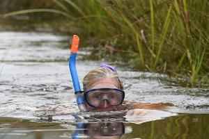 Swimmers brave murky waters at bog snorkelling championships