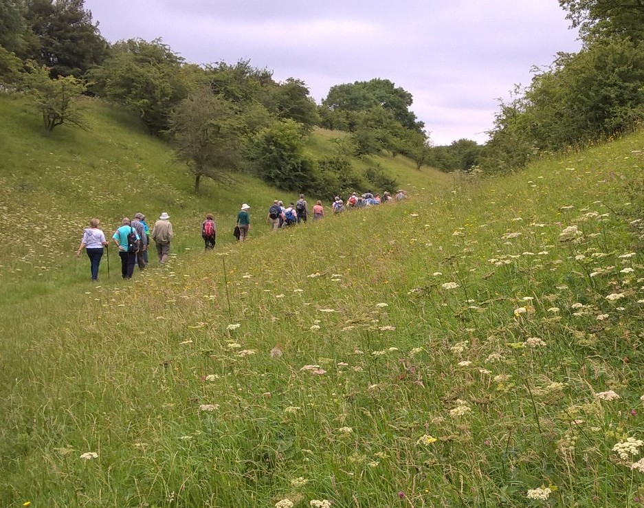 Morning walk from Elmley Castle with Evesham Ramblers