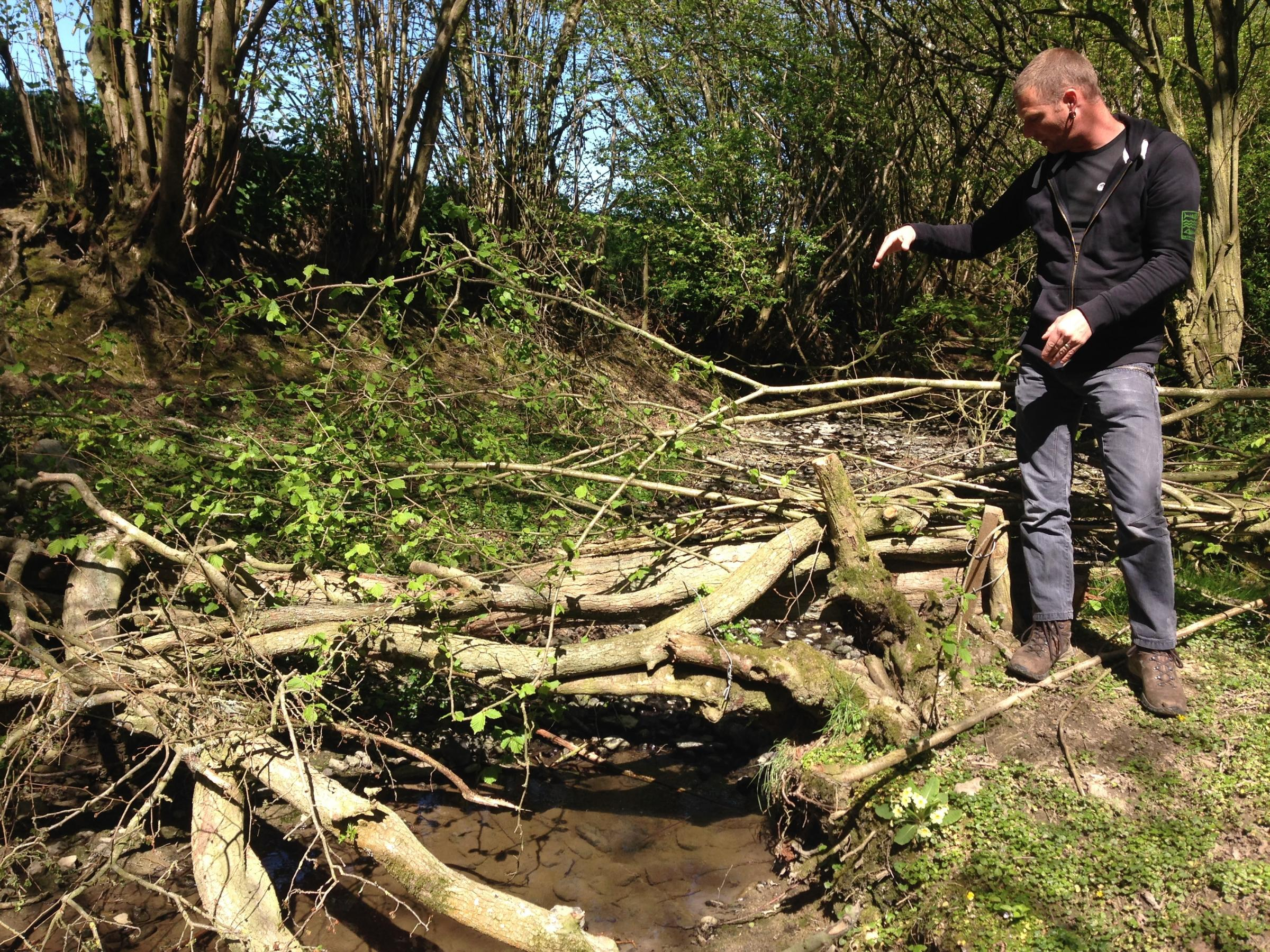 Luke Neal, river projects officer, Shropshire Wildlife Trust, creates 'leaky' woody debris barriers in watercourses high up in the catchment to help to slow flood waters - one of the possible interventions when working with natural processes