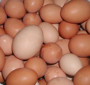 Ludlow Advertiser: Shopkeepers ban youngsters from buying eggs