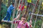 Monkey around amont the tree-tops at Go Ape in the Forest of Dean and Wyre Forest.